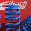 40mm Raceline Eibach Pro Kit Springs   Blue