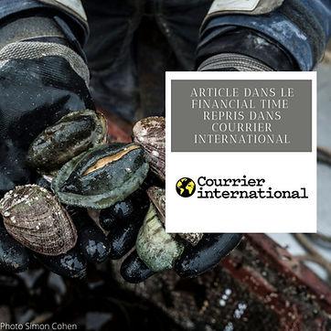 reportage courrier international.jpg