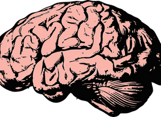 The Science Behind Obtaining Brain Waves