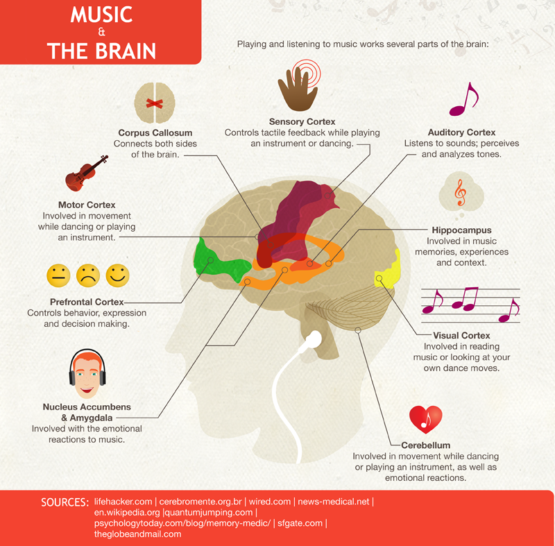 Image from: http://steinwaypianogalleries.com/blog/wp-content/uploads/2015/05/Music-Effect-Infographic.png
