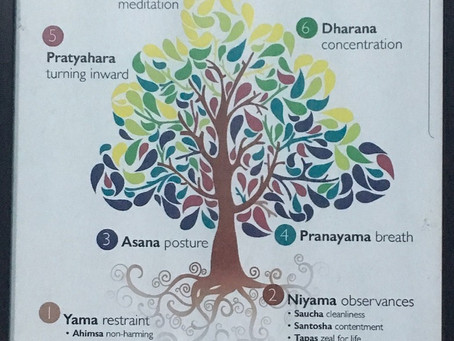 What is Yoga- A Complete Introduction