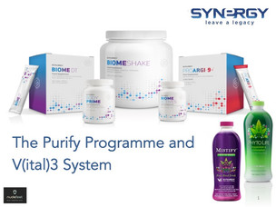 Gut Health with Synergy's Purify Programme and V3 Support System