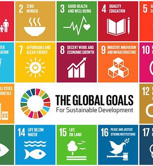 UN Global Goals 2.jpg