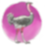 The Ostrich Emoji - Is your approach to fnance to stick your head in th same and hope it goes away?