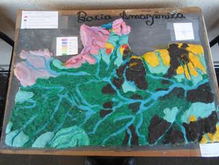 Montagem de maquetes: aprendendo Geografia