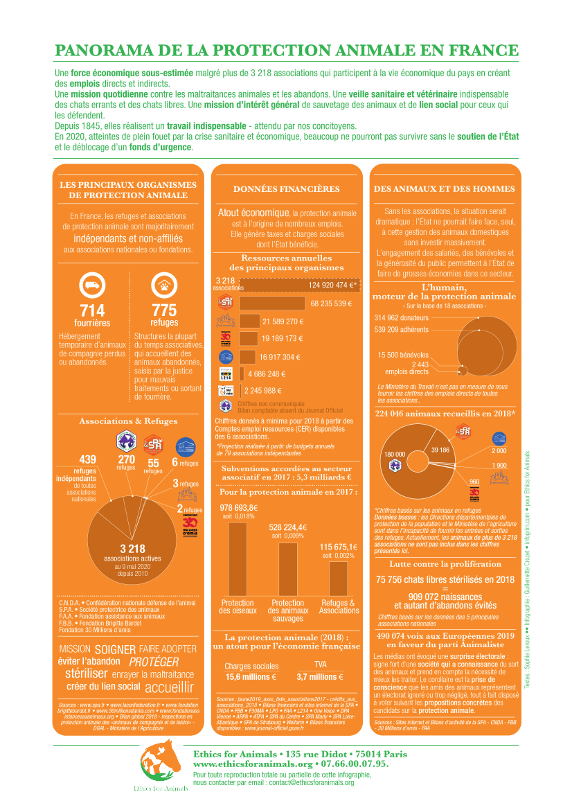 Infographie-Panorama-Protection-Animale-