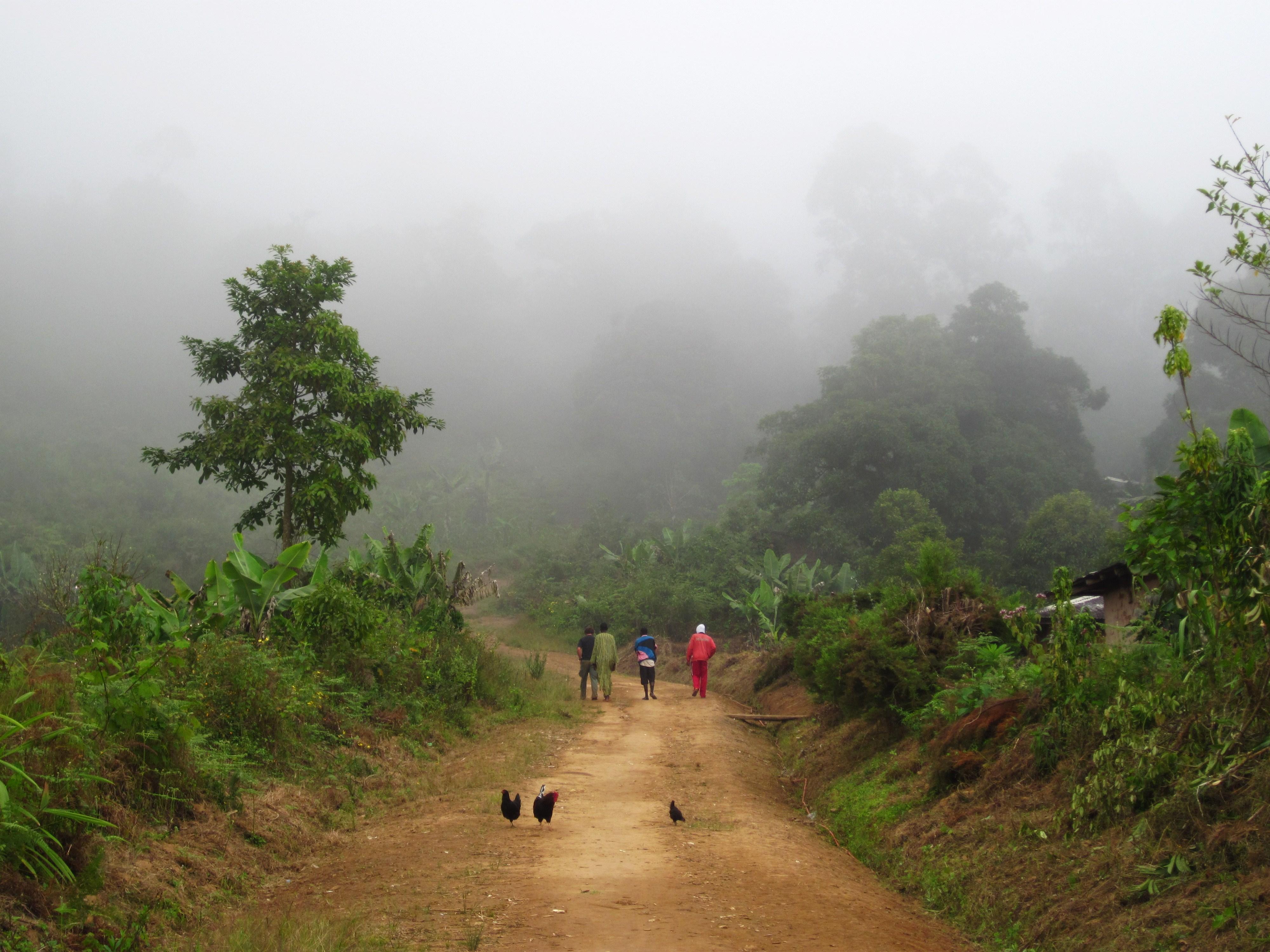 Hilltop Villagers, Cameroon