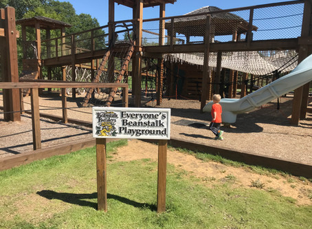 Playtime at the Catawba Meadows Park