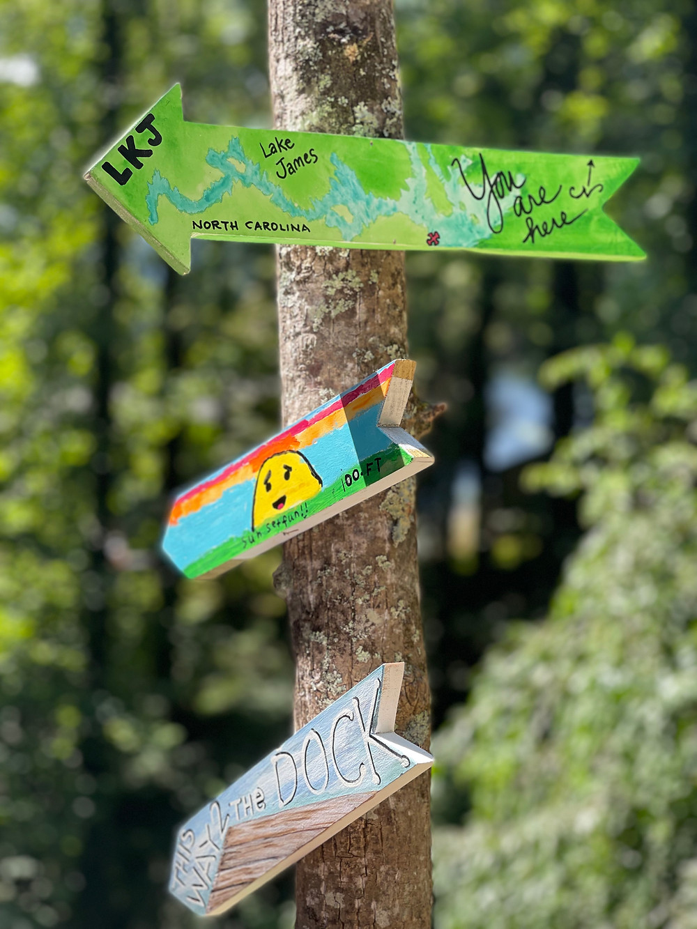 Directional signs that the kids painted for the different attractions around. We plan of adding more as time goes by and we explore more and more.