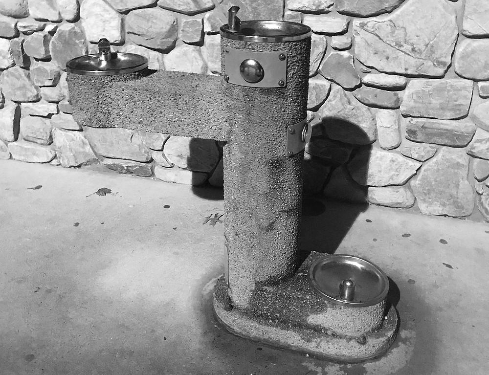 Beanstalk Playground, Morganton, NC water fountain is even pet friendly.