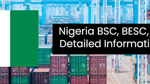 Nigeria welcomes CTN (Cargo Tracking Note)
