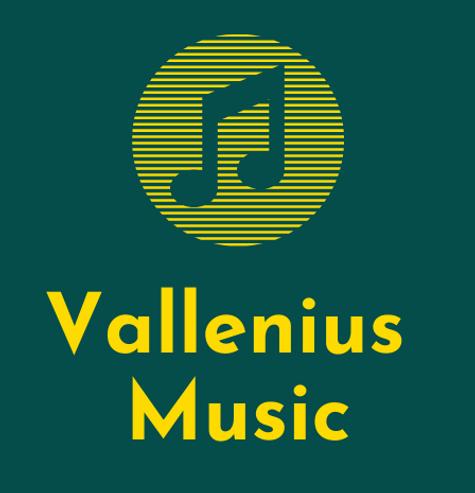 Vallenius Music, musiikin ohjelmapalvelu, esiintyjät, muusikot, häät, perhejuhlat, yritystilaisuudet