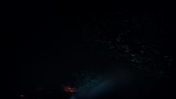 GTFO Screenshot 2021.01.21 - 16.20.27.81