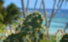menu retour de plage