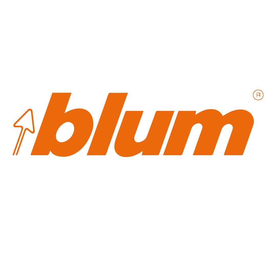logo blum-05.jpg