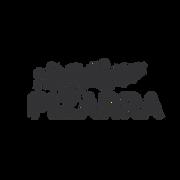 logos finals gris 21082020-11.png