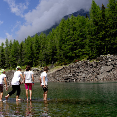 Spostamento con bus di linea a Madesimo. Trekking naturalistico verso il Lago Azzurro. Pranzo al sacco. Troveremo i tritoni?