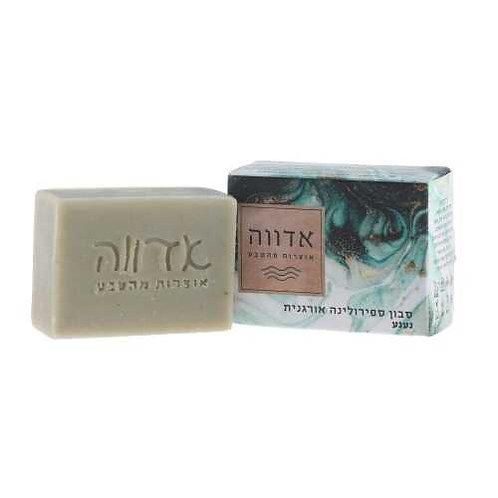 סבון טיפולי - סבון ספירולינה אורגנית, נענע - אדווה