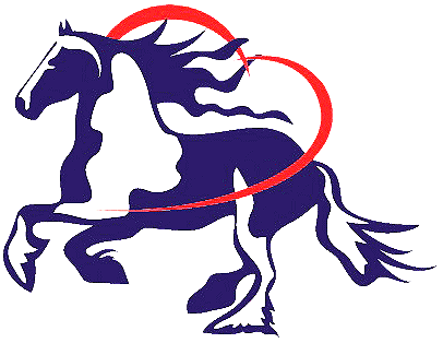 Nasce l'Associazione Ufficiale per la razza Barock Pinto in Italia