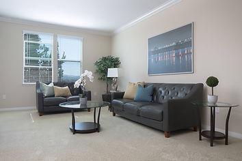 rexIRVINE Living Room Housing