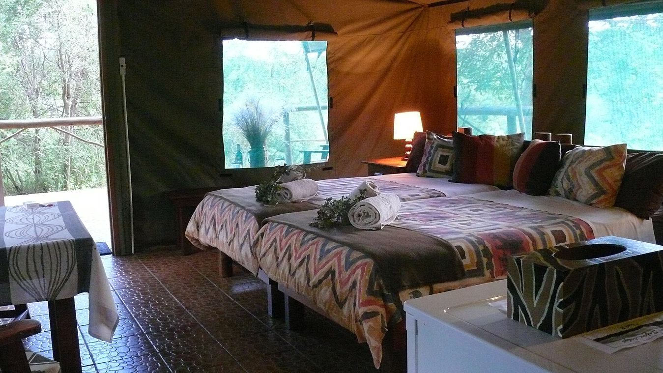 Luxury safari tent & Baluleni Safari Lodge Balule Safari tents in Kruger National Park