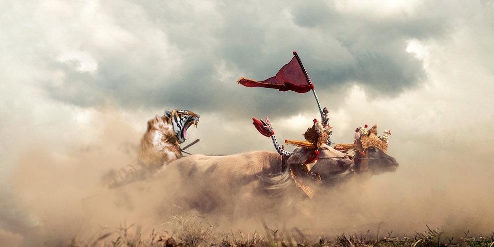 Harimau - BG1.jpg