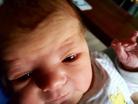 The Birth of Baby Lola!