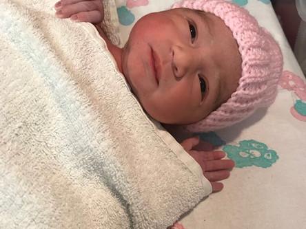 The Birth of Sophia!