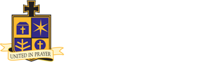 newman-connection-logo-white.png
