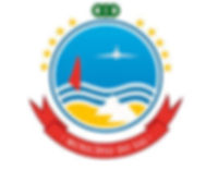 camera municipal logo.jpg