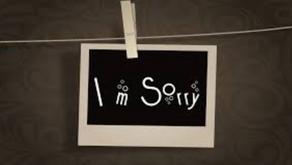 I'm Sorry…. REALLY?