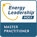 small energy-leadership-index-master-pra