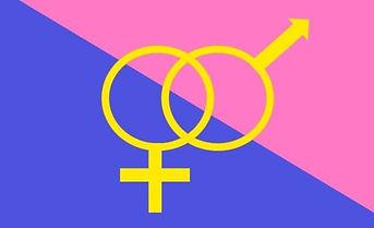 straightpride-flag.jpg