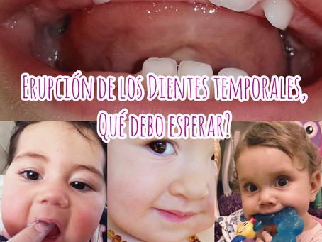 Erupción de los dientes temporales, qué debo esperar?