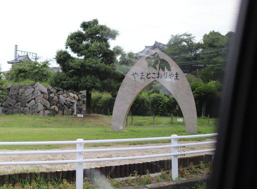 ちょっと足を延ばして奈良に行ってきました②