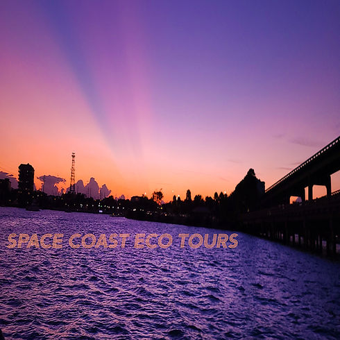 1X1 SUNSET IG.jpg