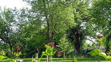 Parc des Cordeliers à Valognes