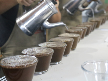 Ficafé 2020: De forma virtual, concurso vai premiar os melhores cafés do Paraná