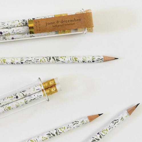 Terrarium Pencils (Set of 5)