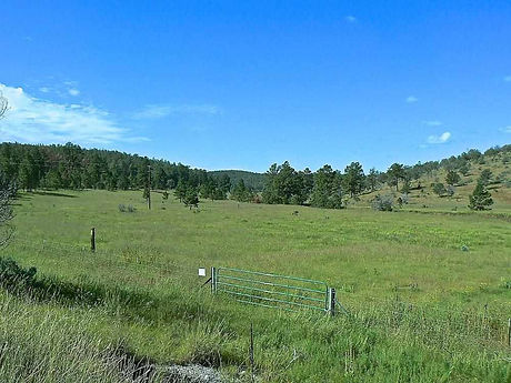 New Mexico Horse property for sale