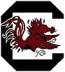 South Carolina B4A Logo.png