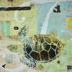 T is for Honu