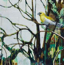 Little Bird in a Wild World