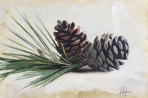"""""""Pine Cones"""" 12/11/19"""