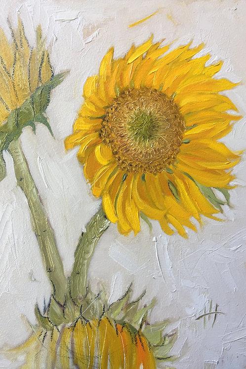 Yellow Flower Sketch - 9/18/19