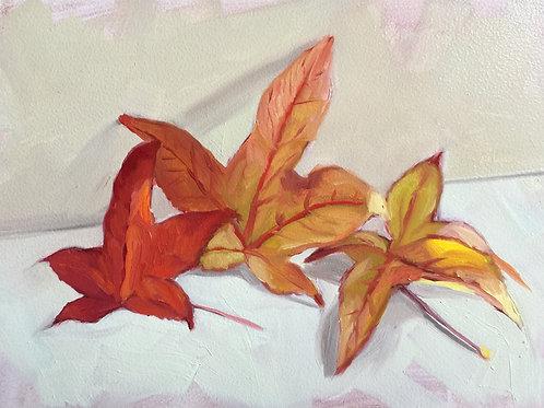 """""""Autumn Sketch"""" 12/19/19"""