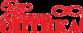 Логотип ООО Ваша ОПТИКА