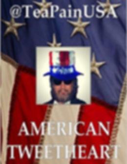 teapainusa american tweetheart book.jpg