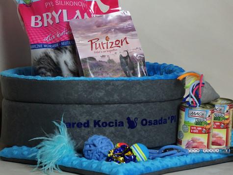 Wyprawka kociaka / Kitten's layette :)
