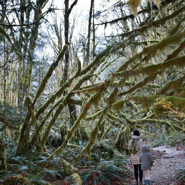 Hiking & Exploration